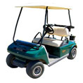 Golf Carts & Personnel Carriers
